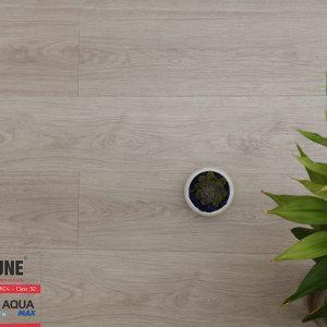 FLI 801 3 300x300 - Sàn gỗ Fortune 801 8mm