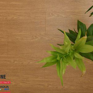 FLI 809 3 300x300 - Sàn gỗ Fortune 809 8mm
