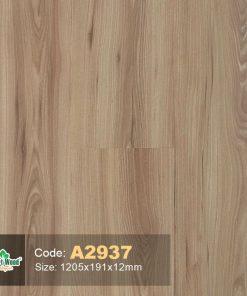 IMG 20180415 094026 compressed 247x296 1 - Sàn gỗ Smartwood 2937