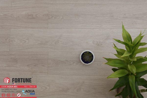 FLI 801 3 600x400 - Sàn gỗ Fortune 801 8mm