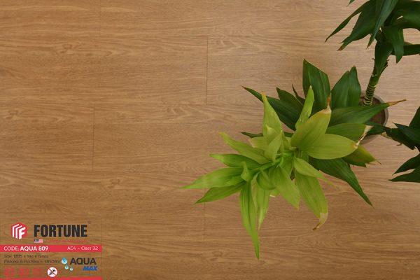 FLI 809 3 600x400 - Sàn gỗ Fortune 809 8mm